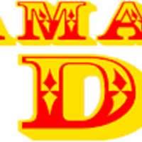 DJ ACEOFDAN MOBILE DISCO  logo