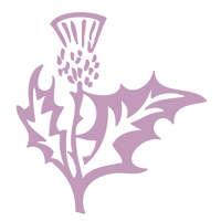 Thistle Production logo