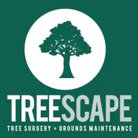 Treescape Tree Surgery and Grounds Maintenance