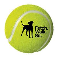 Fetch Walk Sit
