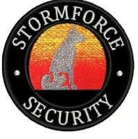 storm force security