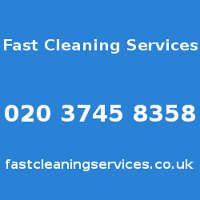 Fast Cleaning Services