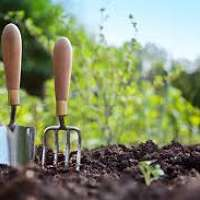 Marley Gardening