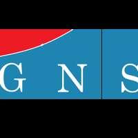 GNS ASSOCIATES LTD logo