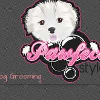 Pawfect Style Dog Grooming