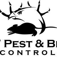 HF Pest & Bird Control