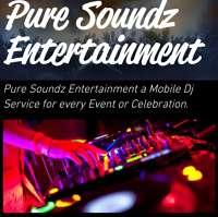 Pure Soundz Entertainment