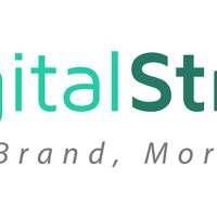 Digital Strategies International Ltd