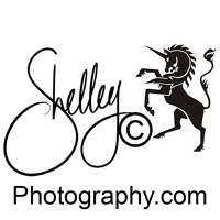 ShelleyC Photography