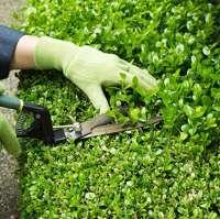 Ian's Gardeners Manchester