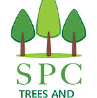 SPC Trees and Landscapes
