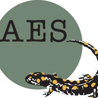 AES plumbing and heating