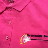The Immaculate Cleaner