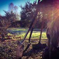 Sylvan Gardening Services