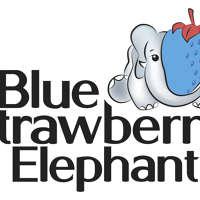 Blue Strawberry Elephant Ltd