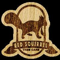 Red Squirrel Tree Care