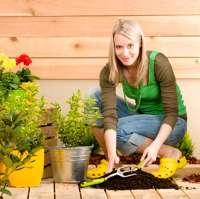Felton's Gardeners