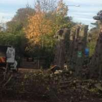 Oaklands tree and garden services