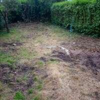 Happy days garden services
