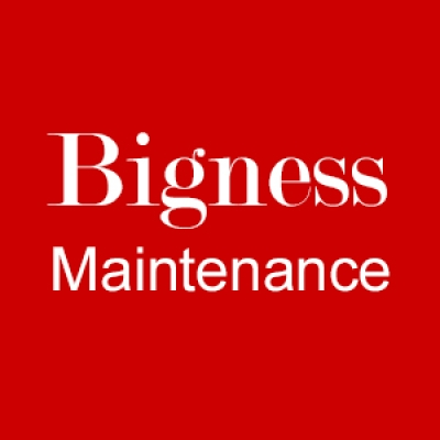 Bigness Property Maintenance Ltd.