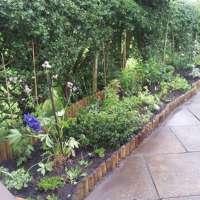 Expressions Garden Planning & Design