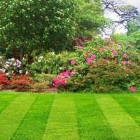 Cheap Gardening Services
