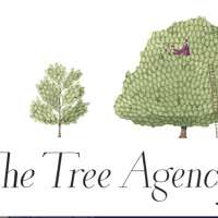 The Tree Agency
