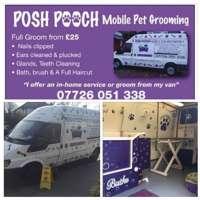 Posh Pooch logo
