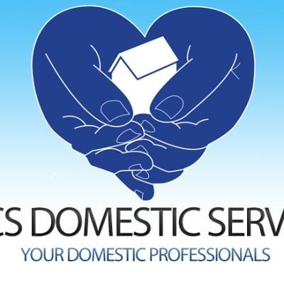 Lincs Domestic Services