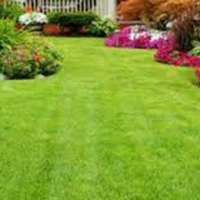 Bob McDonald Home and Garden Services