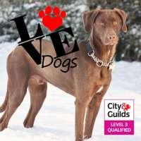 LoveDogs logo