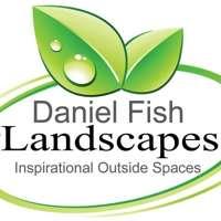 Daniel Fish Landscapes