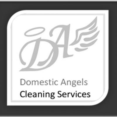 Domestic Angels