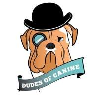 Dudes of Canine