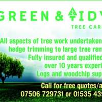 Green and tidy tree care