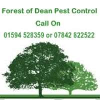 Forest of Dean Pest Control
