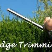 ck hedge cutting