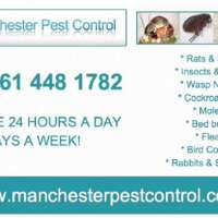manchester pest control