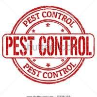 Local pest control.