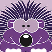 Purple Porcupine Design Ltd