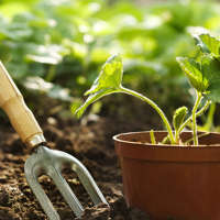 Mid Cornwall Gardening Services