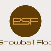 Phil Snowball Flooring