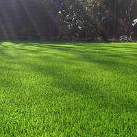 Eden Lawns