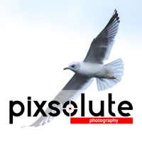 Pixsolute Photography logo