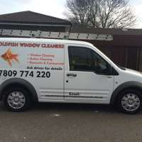 GOLDFISH WINDOW CLEANERS logo