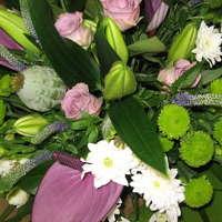Cornucopia Florist & Gift Shop logo