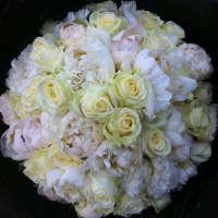 Rose&Mary logo