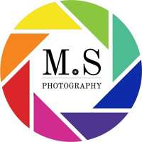 Matt Salmon Photography logo