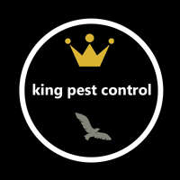 King pest control