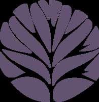 scoopsweb logo